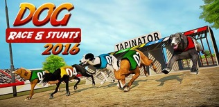 Dog Race & Stunts 2016